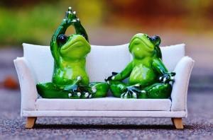 frog-1079985_1280